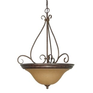 Fleur De Lis Living Claycomb 3-Light Bowl Pendant