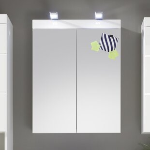 Neema 60cm X 77cm Surface Mount Mirror Cabinet By Metro Lane