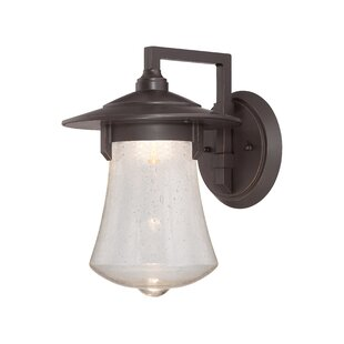 Priscila 1-Light Outdoor Barn Light