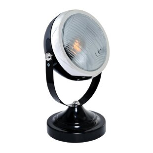 Williston Forge Skylar 1-Light Outdoor Spotlight