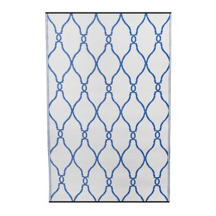Inexpensive Premier Home Hand-Woven Blue/White Indoor/Outdoor Area Rug By Fox Hill Trading