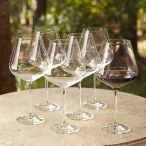 Downing Burgundy Glasses (Set of 6)