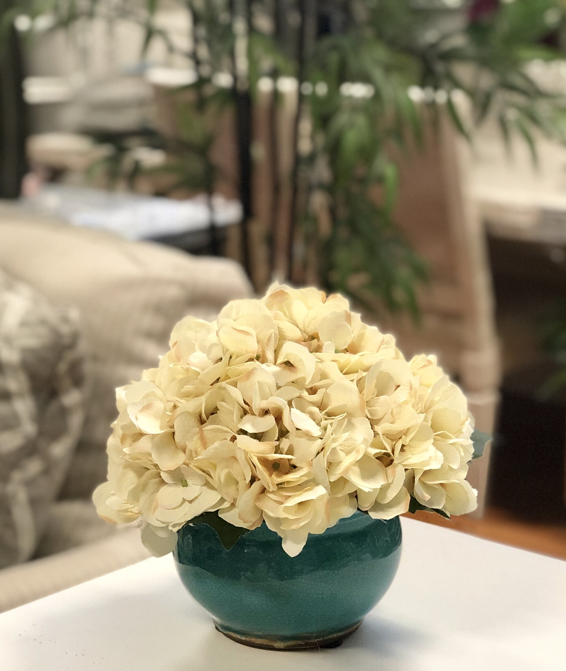 Rosecliff Heights Hydrangeas Floral Arrangement In Pot Wayfair