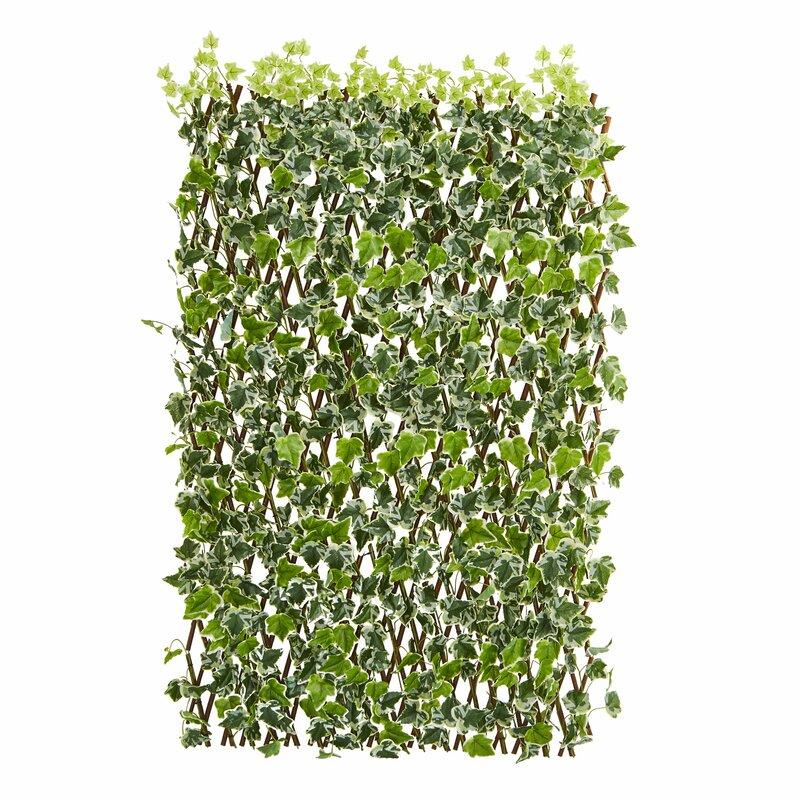 Ft W English Ivy Expandable Fence