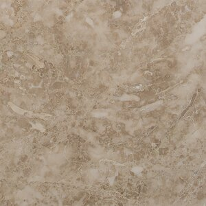 12'' x 12'' Marble Field Tile in Crema Cappuccino