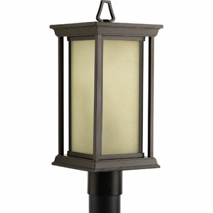 Brayden Studio Zahn 1-Light Lantern Head