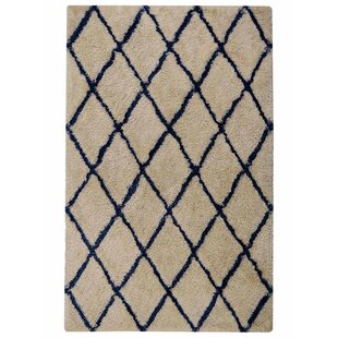 Ry Hand-Tufted White Blue Indoor/Outdoor Area Rug