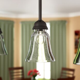 Seeded 5 Glass Bell Pendant Shade