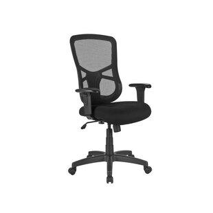 Kintzel Ergonomic Mesh Task Chair