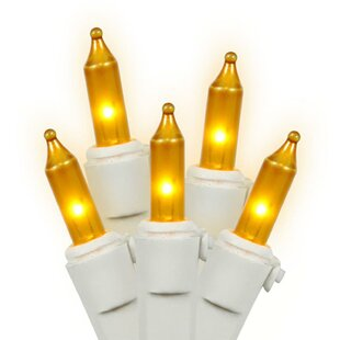 The Holiday Aisle Mini Christmas 100 Light Indoor/Outdoor String Light with Wire