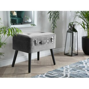 Dalessio Velvet Storage Vanity Stool by Mercer41