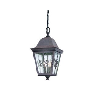 Rey 3-Light Outdoor Hanging Lantern by Darby Home Co