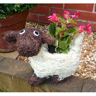 Sincere Natural Fibre Statue Planter By Brambly Cottage