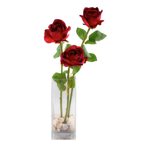 Red Vanilla 3 Rose Floral Arrangement Reviews Wayfair