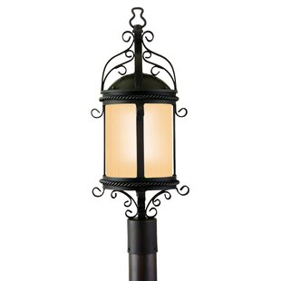 Brewster Outdoor 1-Light Lantern Head by Darby Home Co