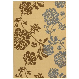 Laurel Brown/Blue Indoor/Outdoor Area Rug