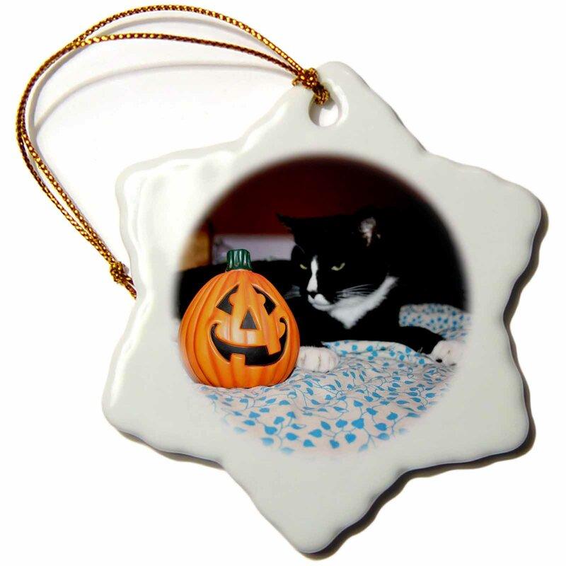 The Holiday Aisle Tuxedo Cat Behind Small Pumpkin Snowflake Holiday Shaped Ornament Wayfair