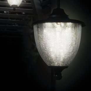 Fellsburg 1-Light Led Outdoor Hanging Lantern