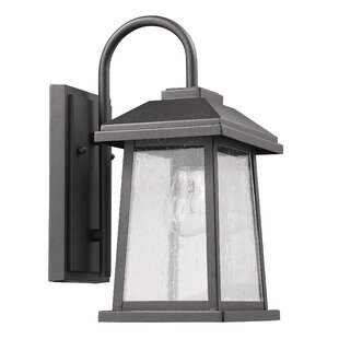 Williston Forge Bouck 1-Light Outdoor Wall Lantern
