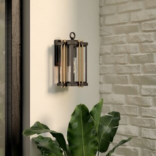 Francois 1-Light Outdoor Wall Lantern by Willa Arlo Interiors