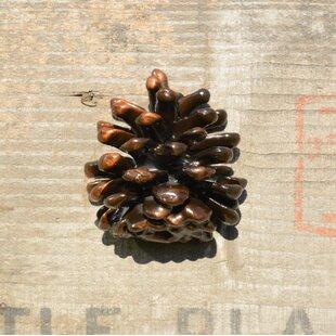 Ponderosa Pine Novelty Knob