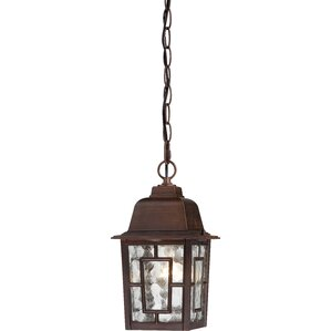 Timmons 1 Light Outdoor Hanging Lantern