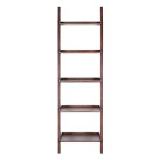 Ronnebeck 77 Leaning Bookcase by Birch Lane
