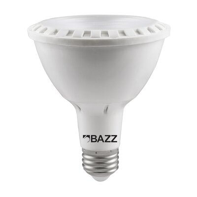 Bazz 11W LED Light Bulb