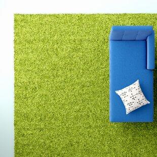Wayfair 5 X 8 Green Area Rugs You Ll Love In 2021