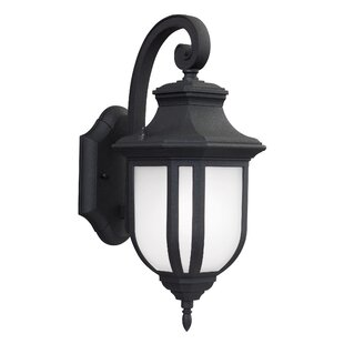 Look for Teri 1-Light Outdoor Wall Lantern By Fleur De Lis Living