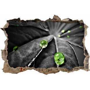 Small Raindrops On A Beautiful Plant Wall Sticker By East Urban Home