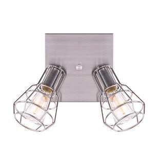 Williston Forge Mcquaid 2-Light Directional & Spotlight