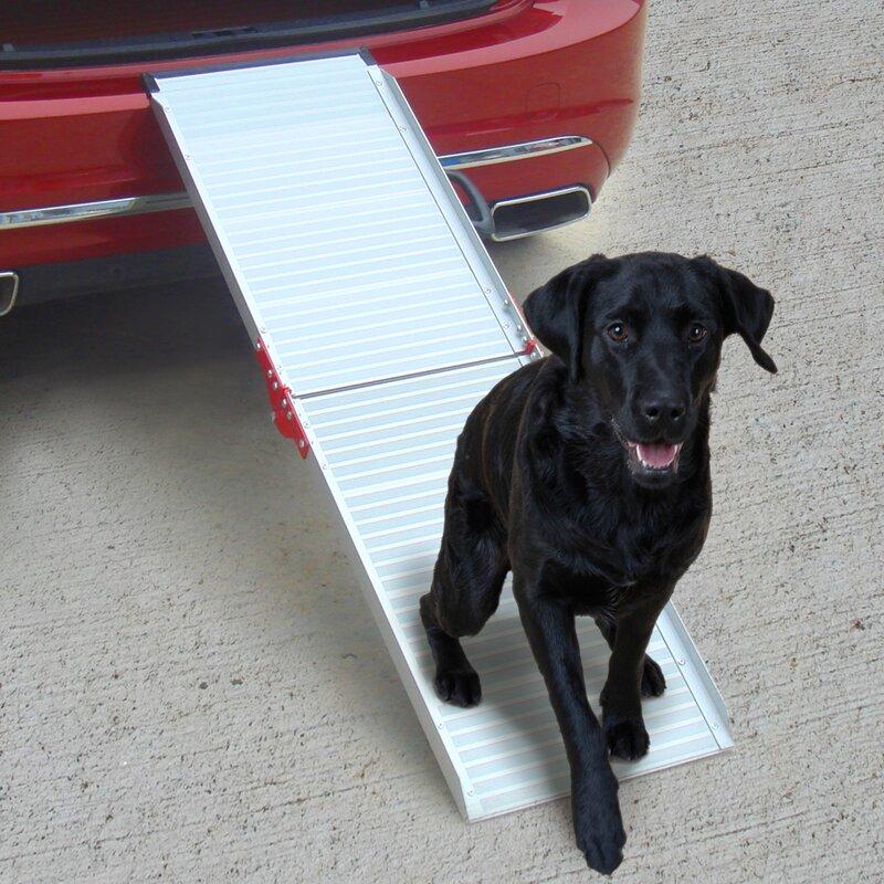 Penn Plax Dog Life 72
