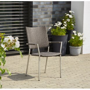 Carrizal Garden Chair By Mercury Row