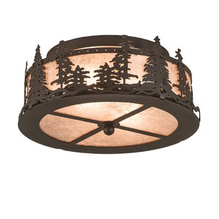 Evins 2-Light Semi Flush Mount..