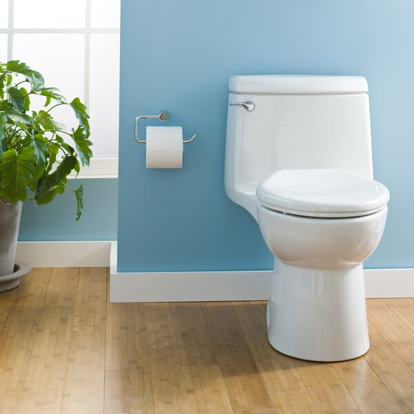 The Best One Piece Toilet 2019 10 Amazing Toilet Reviews