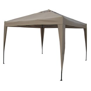 10 Ft. W x 10 Ft. D Metal Pop-up Canopy by Abble Inc.