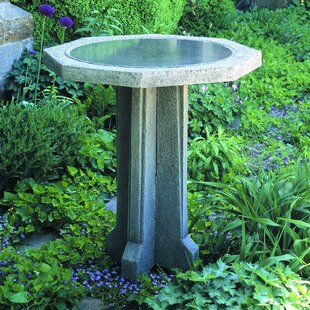 Campania International Pine Meadow Birdbath