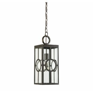 Gracie Oaks Wycoff 1-Light Outdoor Hanging Lantern
