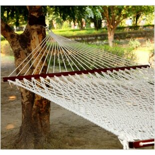 Mckenna Fabric Rope Tree Hammock by Freeport Park