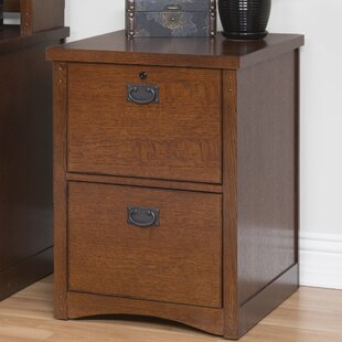 Benno 2-Drawer Vertical File by Millwood Pines