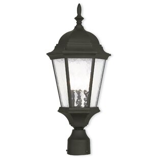 Darby Home Co Busse 3-Light Lantern Head