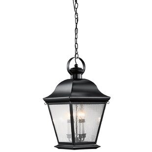 Three Posts Darrah 4-Light Outdoor Hanging Lantern
