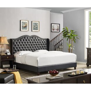 Nobhill Upholstered Panel Bed
