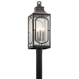 Salena Outdoor 4-Light Lantern Head by Darby Home Co