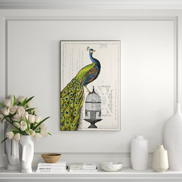 Clicart Peacock Birdcage I By Sue Schlabach Picture Frame Graphic Art Print On Paper Perigold