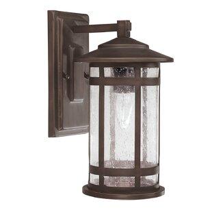 Gracie Oaks Luiz 1-Light Outdoor Wall Lantern