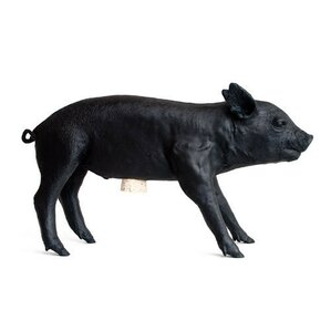 Piggy Banks Youll Love  Wayfair