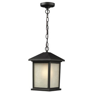 Best Reviews Stevens 1-Light Outdoor Hanging Lantern By Andover Mills