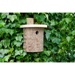 Herkimer Mounted Bird House By Sol 72 Outdoor